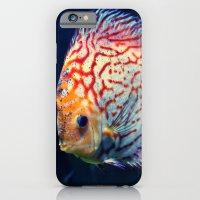 iPhone & iPod Case featuring Dzuko by Arevik Martirosyan