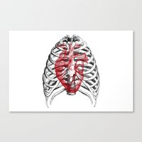 Heart Bones Canvas Print