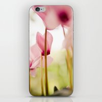 Cyclamen Forest iPhone & iPod Skin