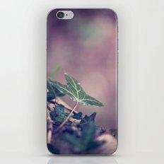 Vulnerable iPhone & iPod Skin