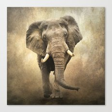 African Beauty Canvas Print
