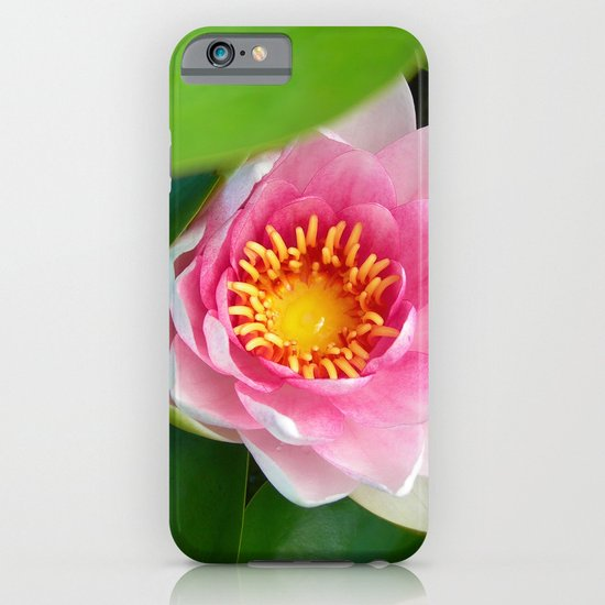 water lily IV iPhone & iPod Case