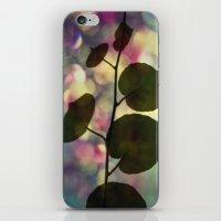 Kiwi Leaves iPhone & iPod Skin