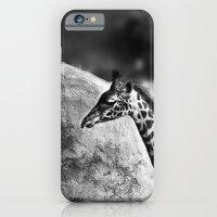 Whiteout - Giraffe iPhone 6 Slim Case