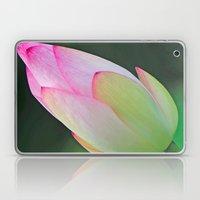 Pink Water Lily Laptop & iPad Skin