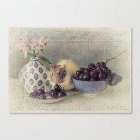 Snoozy loves grapes Canvas Print