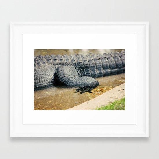The Alligator Crawl Framed Art Print