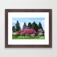 Crab Apple Trees Framed Art Print