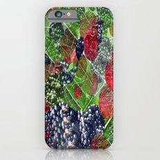 mixture of nature iPhone 6 Slim Case