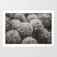 Sepia Black And White Bo… Art Print