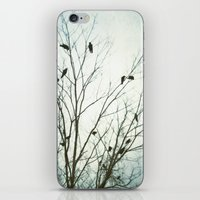 A Blue Gray Day iPhone & iPod Skin