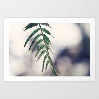 Botanical Beauty Art Print