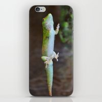 Green Lizard iPhone & iPod Skin