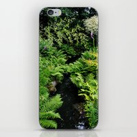 The Chinese Garden iPhone & iPod Skin