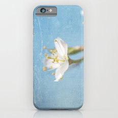 White and Blue Spring no. I iPhone 6s Slim Case