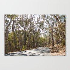 California Road Canvas Print