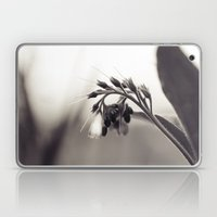 Field Dragon Laptop & iPad Skin