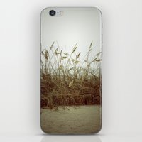 Beach Wheat Grass iPhone & iPod Skin