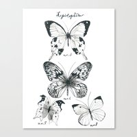 Lepidoptera Study Black & White Butterflies Canvas Print