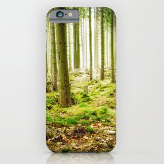 A Fairytale Forest iPhone 6 Slim Case