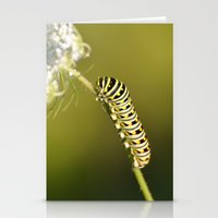 Catapillar On Queen Anns… Stationery Cards