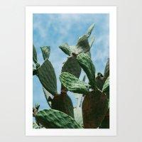 Roman Cactus Art Print