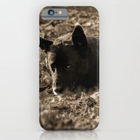 An old friend iPhone 6 Slim Case