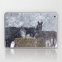Cold Winter Laptop & iPad Skin
