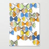 More Bows & Butterflies Canvas Print
