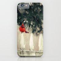 Snowy Day Cardinal iPhone 6 Slim Case