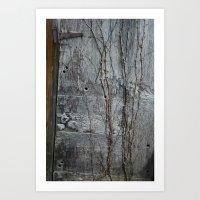 Vine And Hinge Art Print