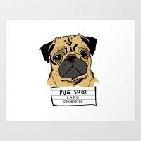 Pug Shot Art Print