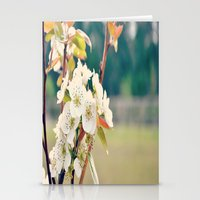 Pear Blossoms Stationery Cards