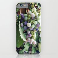 grape iPhone 6 Slim Case