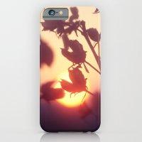 Garden Sunset iPhone 6 Slim Case