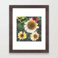 Spring flowers yellow mums Framed Art Print