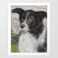 The Sheepdog Art Print