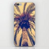 Tenerife Palm Tree iPhone & iPod Skin