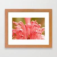 Pink spring 413 Framed Art Print