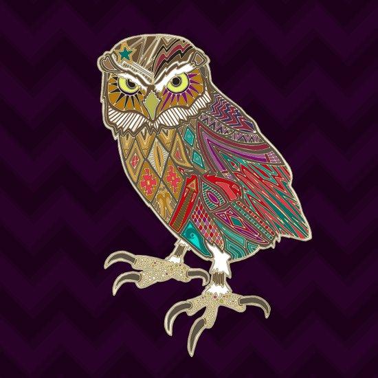 little brother owl Art Print