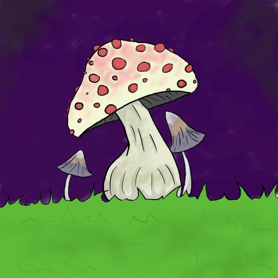Little Mushrooms  Art Print