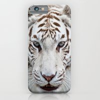 tiger iPhone & iPod Cases featuring Tiger Tiger by Catspaws