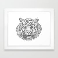 The Tiger's head Framed Art Print