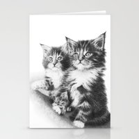 Double Dose of  Kittens Stationery Cards