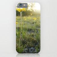 Lakeside Daisy iPhone 6 Slim Case