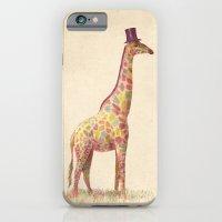 giraffe iPhone & iPod Cases featuring Fashionable Giraffe by Terry Fan