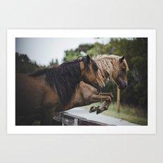 jumping ponies Art Print