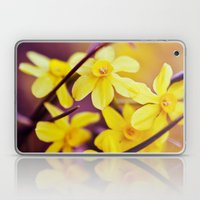 Like A Dream II Laptop & iPad Skin