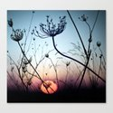 Evening between Chaos Canvas Print