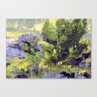 Evergreen Study Canvas Print